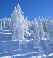 snow with blue sky