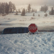 stop sign in snow